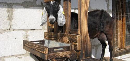 доильный аппарат для коз своими руками