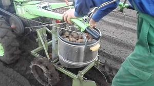 Сажалка картофеля для мотоблоков
