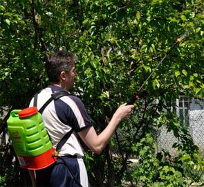 Аккумуляторные садовые опрыскиватели